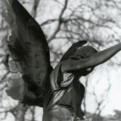 Un ange..