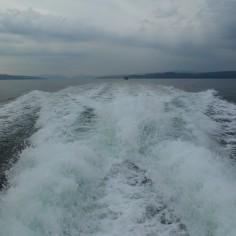 Sur le bateau pour le Wildlife Tour