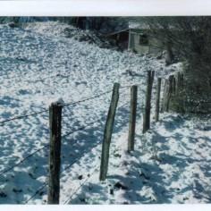 Sous la neige en Auvergne
