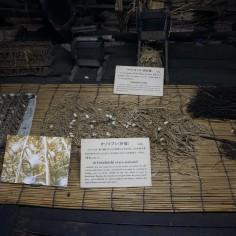Ancien élevage de vers à soie