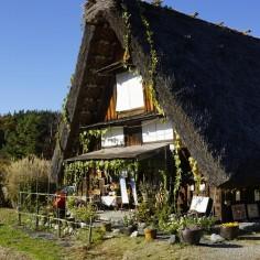 Des concombres (?) jusqu'en haut du toit !