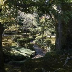 Jardin Kenrokuen