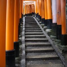 Dans les toriis lala