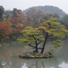 Il est entouré d'un petit lac sur lequel pousse des arbres.