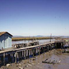 Carrasqueria (marée basse)