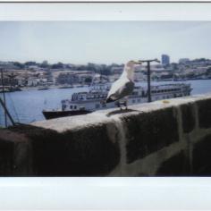 Portugal 05